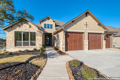 Boerne Single Family Home New: 113 Cantina Sky