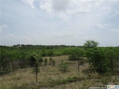 Guadalupe County Farm & Ranch For Sale: 0000 Cottonwood Creek