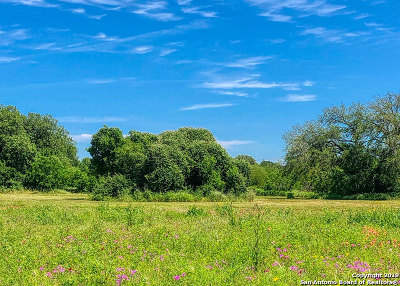 Floresville Residential Lots & Land For Sale: 156 Parkcrest