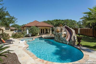 San Antonio Single Family Home For Sale: 24 Champion Tr