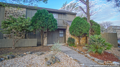 New Braunfels Condo/Townhouse For Sale: 113 T Bar M Dr #A113