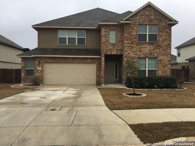 Cibolo Single Family Home For Sale: 513 Saddle Hill