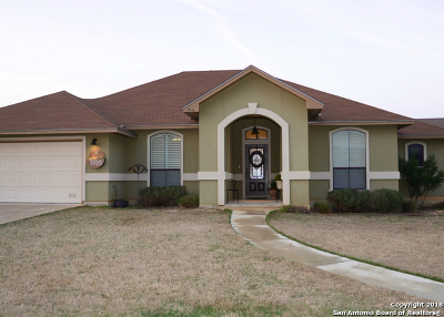 Atascosa County Single Family Home For Sale: 1916 Vista View Dr