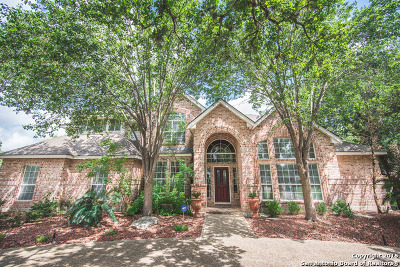 Boerne Single Family Home For Sale: 504 Kendall Pkwy