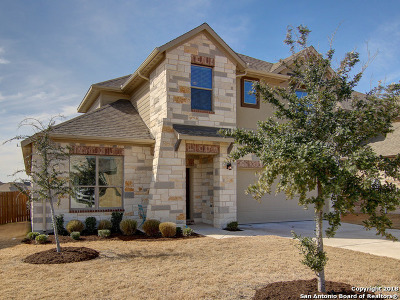 Round Rock Single Family Home For Sale: 6928 Donato Pl