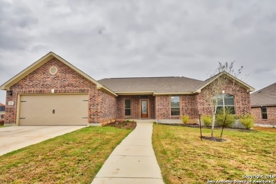 Floresville Single Family Home For Sale: 160 Fairway Dr