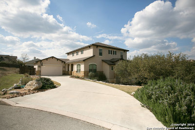 Helotes Single Family Home For Sale: 13415 Wind Ridge