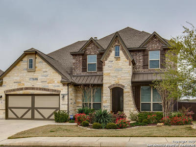 Boerne Single Family Home For Sale: 7911 Drury Pass