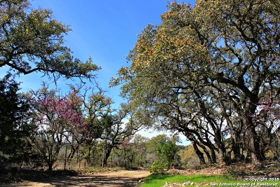 Helotes Residential Lots & Land For Sale: 00 Canyon Creek Rd