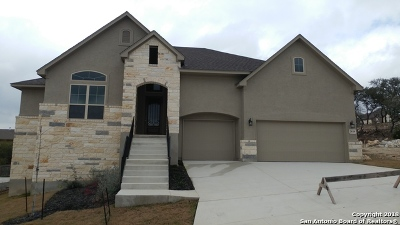 Bexar County Single Family Home For Sale: 28119 Baldacci Vista