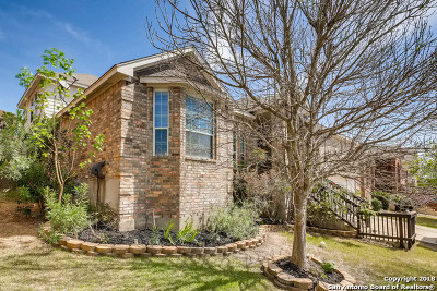 Helotes Single Family Home New: 10539 Rainbow View