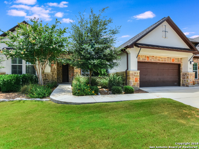 San Antonio Single Family Home For Sale: 18419 Golden Maize