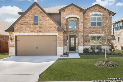 Cibolo Single Family Home New: 244 Bee Caves Cv