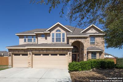Cibolo Single Family Home For Sale: 734 Bethpage Ct
