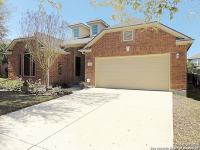 Cibolo Single Family Home For Sale: 210 Long Cove Dr