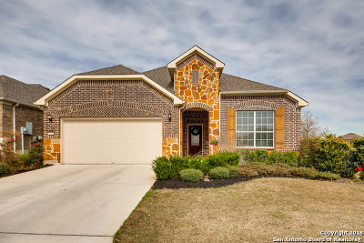 Boerne Single Family Home New: 27410 Camino Tower