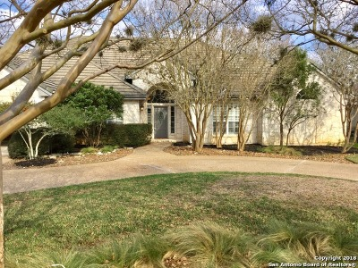 Fair Oaks Ranch Single Family Home New: 29514 Fairway Bluff Dr