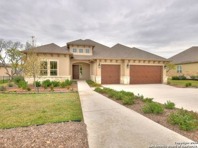 Boerne Single Family Home For Sale: 109 El Cielo