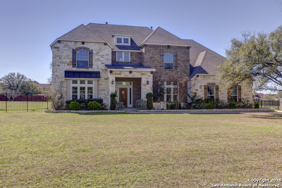 New Braunfels Single Family Home New: 134 Lowman
