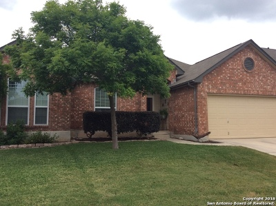 Helotes Single Family Home For Sale: 9307 Trailing Fern