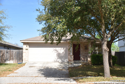 New Braunfels Single Family Home For Sale: 2643 Hunt St