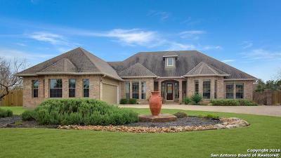 Fair Oaks Ranch Single Family Home New: 31034 Keeneland Dr