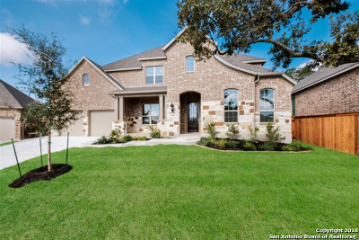 Boerne Single Family Home For Sale: 28807 Porch Swing
