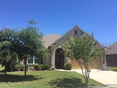 Cibolo Single Family Home New: 542 Torrey Pines