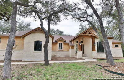 New Braunfels Single Family Home New: 211 Iron Horse