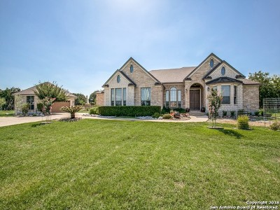 New Braunfels Single Family Home For Sale: 27411 Parkweg Loop
