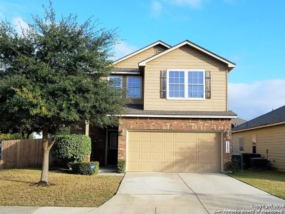 Helotes Single Family Home New: 11126 Verbena Path