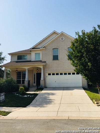 Schertz Single Family Home New: 519 Ginsberg Dr