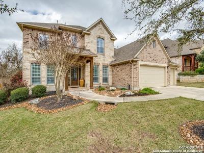 San Antonio Single Family Home New: 3507 Puesta De Sol