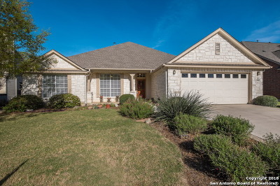 Helotes Single Family Home New: 13707 Windy Creek