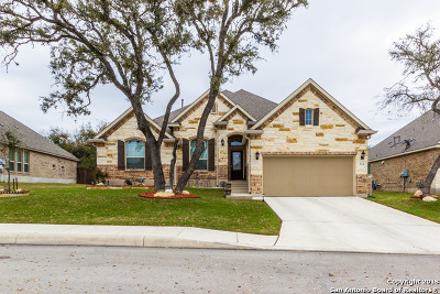 San Antonio Single Family Home New: 814 Gold Beauty