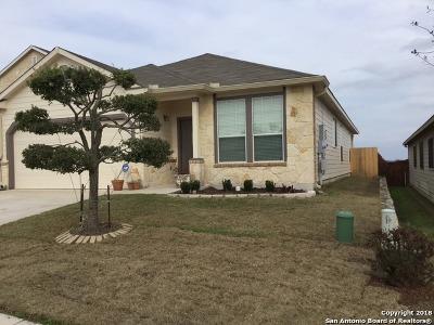 Boerne Single Family Home New: 27234 Rio Cove