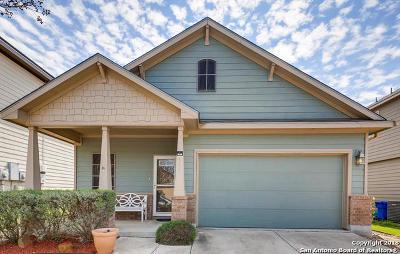Cibolo Single Family Home New: 541 Stonebrook Dr