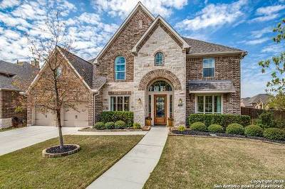 San Antonio Single Family Home New: 25827 Raven Ridge