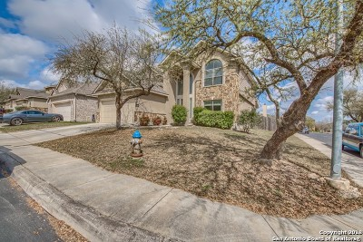 San Antonio Single Family Home New: 27243 Trinity Bnd