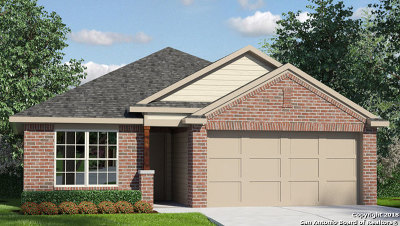 New Braunfels Single Family Home New: 2553 McCrae