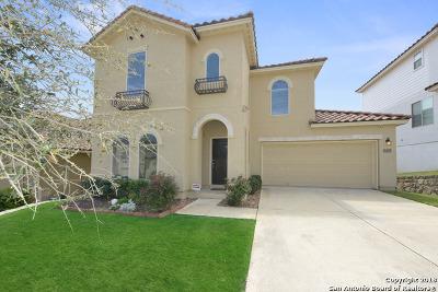 San Antonio Single Family Home New: 18035 Muir Glen Dr