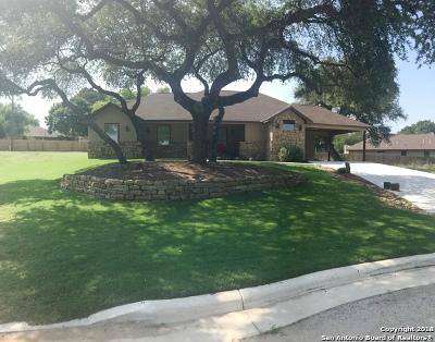 Medina County Single Family Home New: 318 Howard Dr