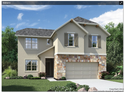 Helotes Single Family Home New: 10407 Palmera Drive