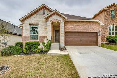 Boerne TX Single Family Home New: $332,500