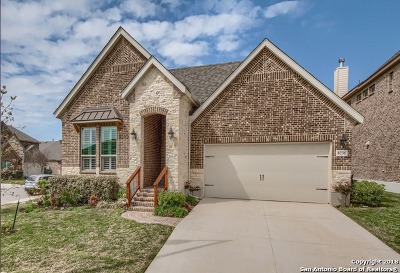 Boerne TX Single Family Home New: $334,900