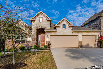 Helotes Single Family Home New: 17011 Castlehead Dr