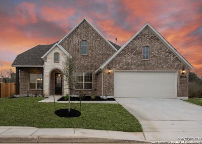 San Antonio Single Family Home New: 14206 Rio Rancho