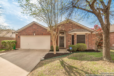 San Antonio TX Single Family Home New: $250,000