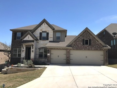 Boerne TX Single Family Home New: $439,500
