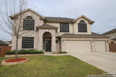 San Antonio Single Family Home New: 10703 Timber Country